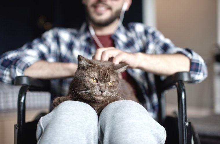 pet_therapy_2